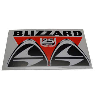 Sticker Blizzard 25 ans